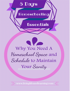 why you need homeschool space and a schedule to maintain your sanity