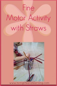 Fine Motor Activity with Straws