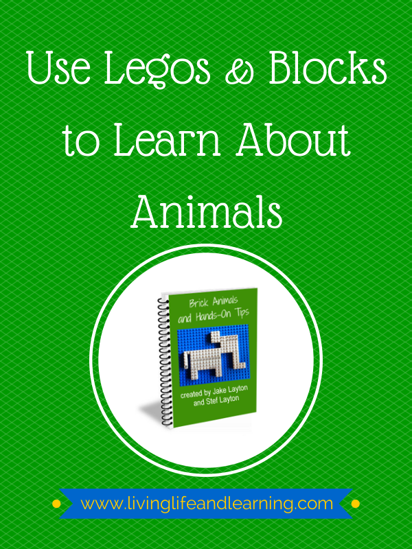 How to Use Legos and Blocks to Learn about Animals