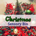 christmas preschool sensory activities - christmas bin