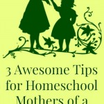 Homeschooling advice for large families