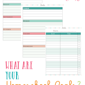 Set your homeschool plans on the right path and set up your homeschool goals for the year for each child