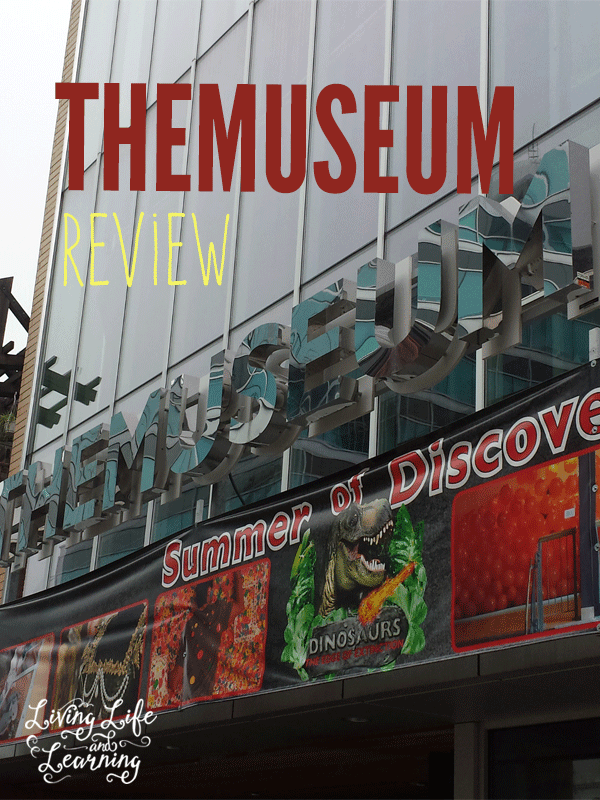 THEMUSEUM Review