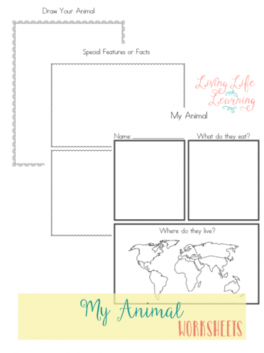 Research your own animal and keep track of what you've learned with these animal worksheets