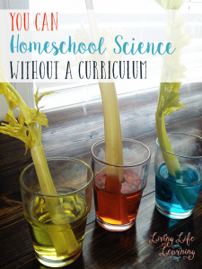 Homeschooling science can be intimidating but you don't have to use textbooks, you can homeschool science without a curriculum and make learning fun