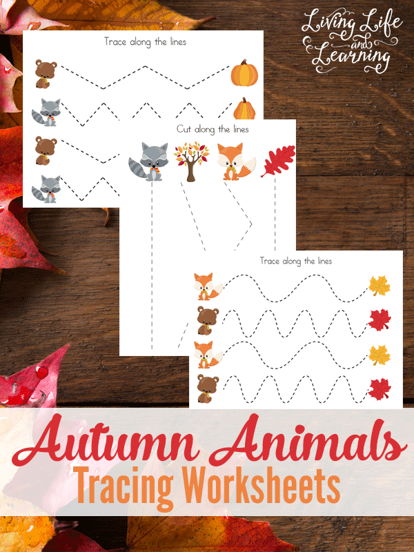 Autumn Animals Tracing Worksheets by Living Life and Learning