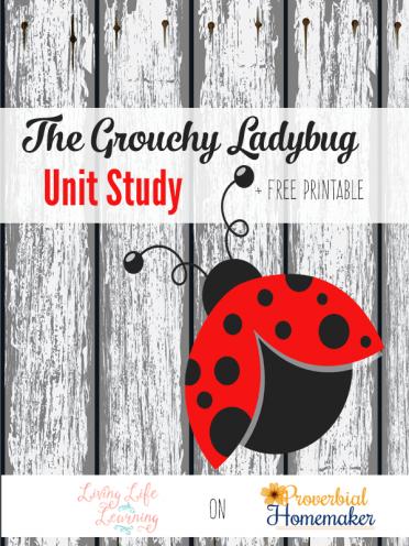 The Grouchy Ladybug Unit Study