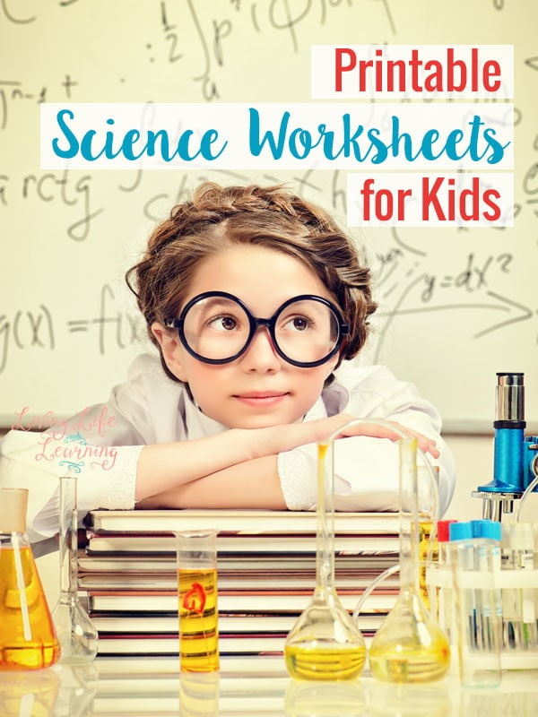 math worksheet : printable science worksheets for kids : Free Printable Science Worksheets For Kindergarten