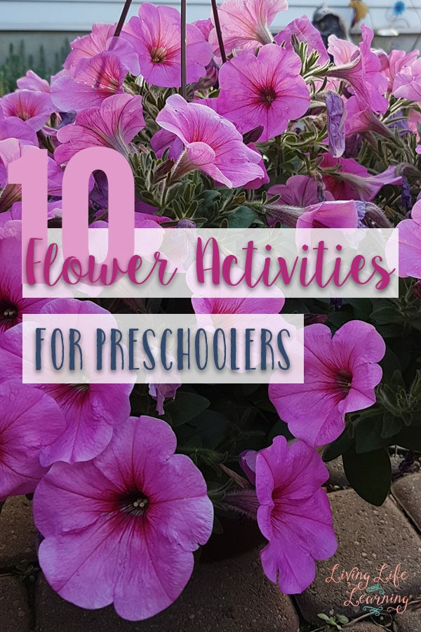 Summer's here and flowers are everywhere, grab one of these flower activities for preschoolers to bring flowers inside