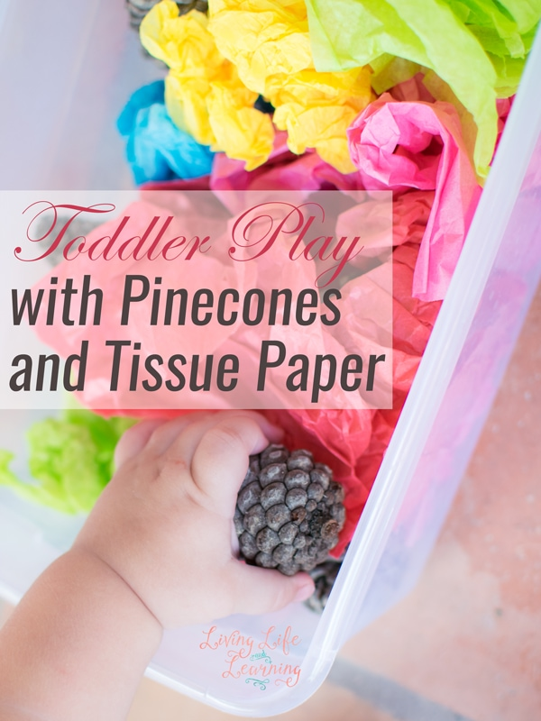 Toddler Play with Pinecones and Tissue Paper