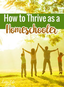 How to Thrive as a Homeschooler