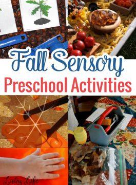 Fall Sensory Preschool Activities