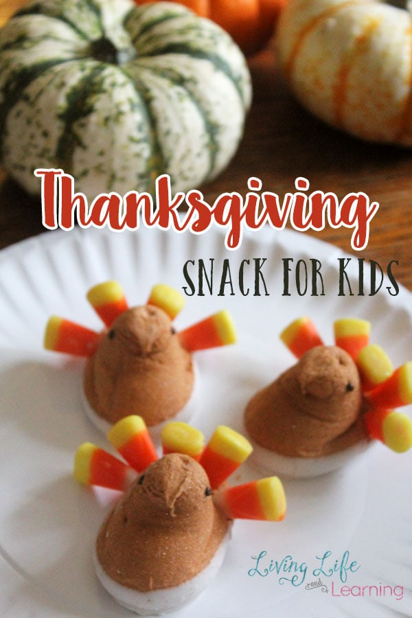 Thanksgiving Snack for Kids
