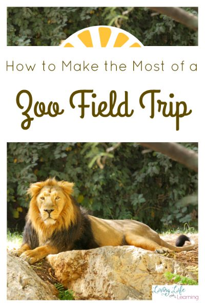 How to Make the Most of a Zoo Field Trip