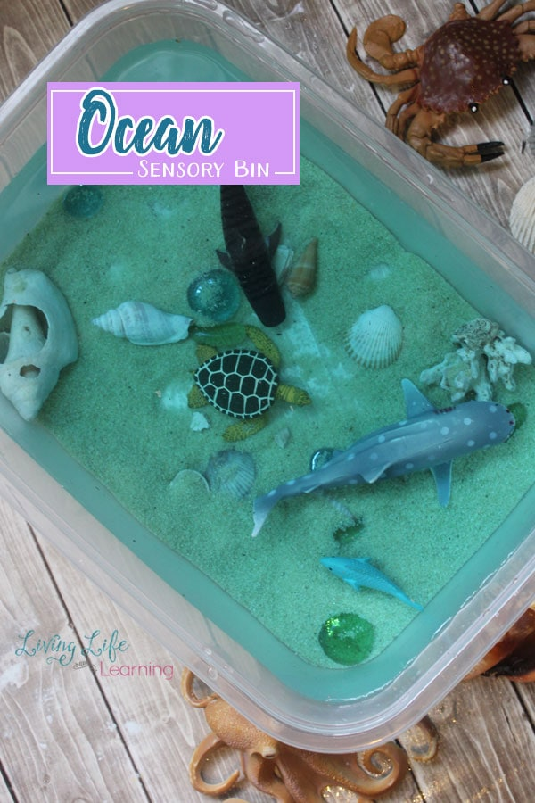 Ocean Sensory Bin Activity for Kids