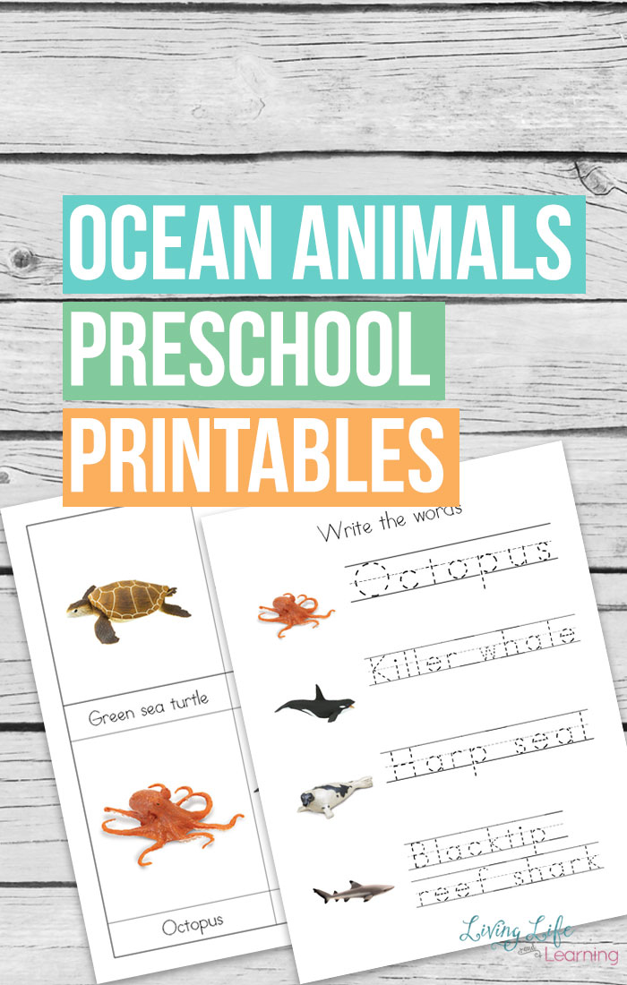 Safari Ltd Ocean Animals Preschool Printables
