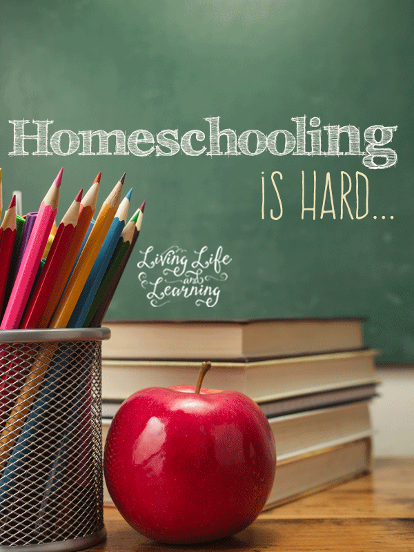 The struggle is real and I am not perfect, homeschooling is hard, it takes all of your strength and exposes your weaknesses.