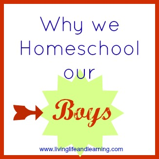 why we homeschool our boys
