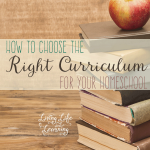 How to Choose the Best Curriculum for Your Homeschool