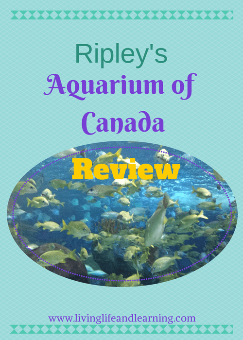 Ripley's Aquarium of Canada Review