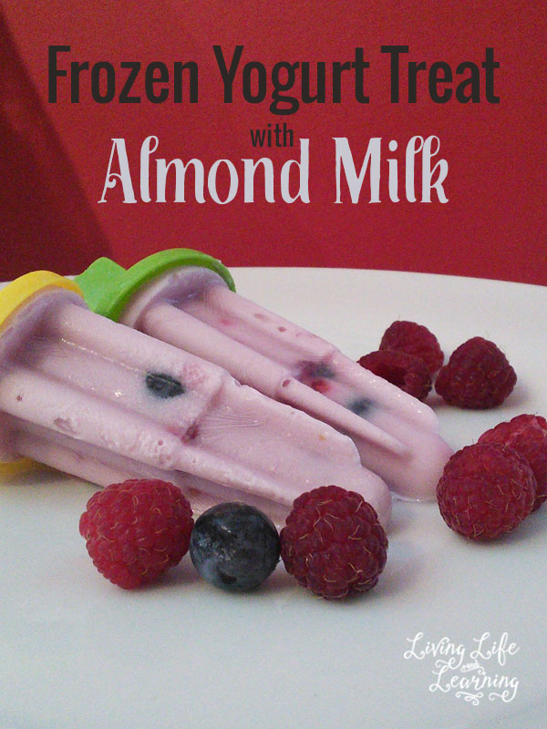 Yummy Frozen Yogurt Treat with Almond Milk