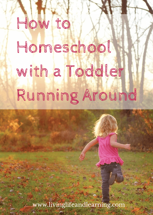 How to Homeschool with a Toddler Running Around - homeschooling among the chaos of a toddler while trying to work with older kids