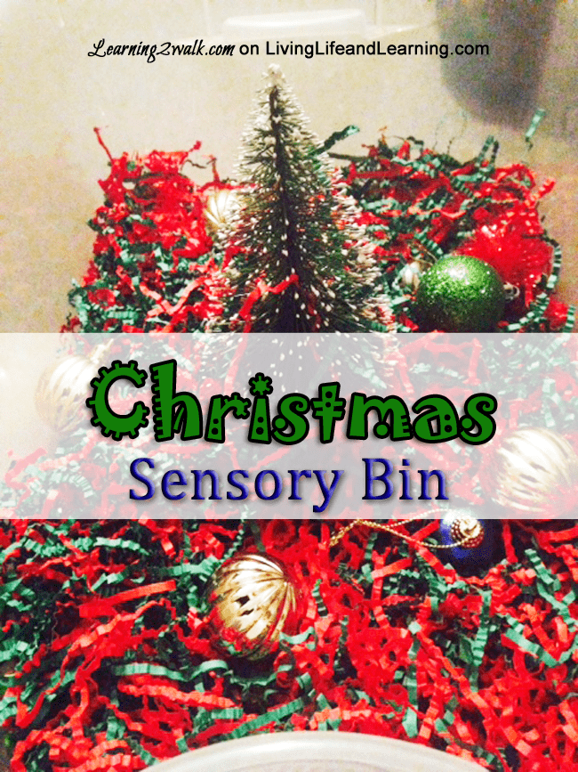 christmas preschool sensory activities - christmas bin