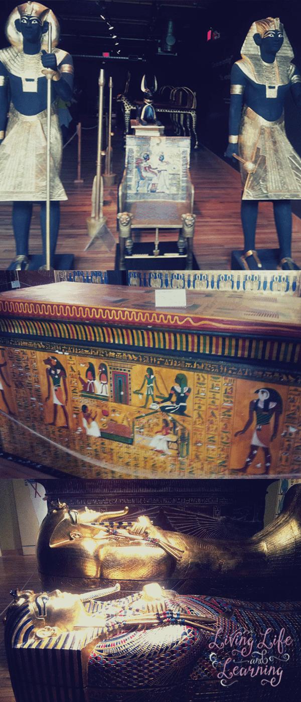 waterloo-museum-king-tut