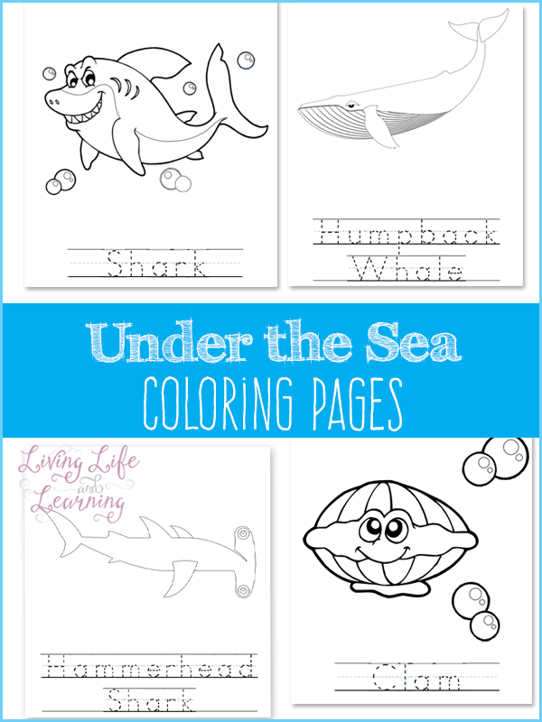 Under the sea coloring pages that your ocean lover will enjoy this coloring activity