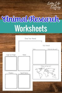 Learn about your favorite animals and record what you've learned with these animal research worksheets! Explore and learn with your child! #education #animal #homeschool #kindergarten