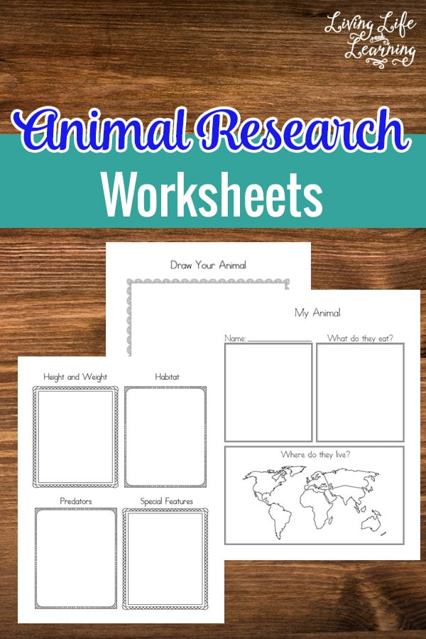 My Animal Research Worksheets