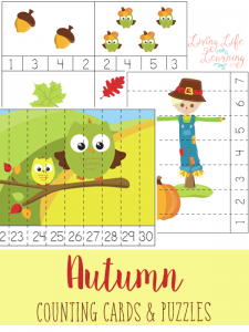 Your preschooler can practice counting with these worksheets.They are fun Fall Counting Cards and Puzzles that will bring the Fall season with a bang!