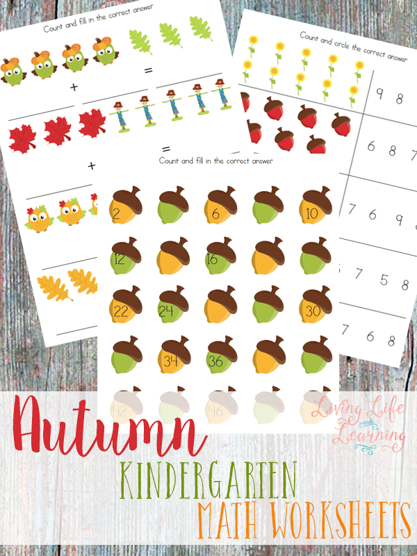 Addition, subtraction and more with these cute autumn kindergarten math worksheets