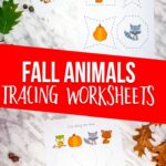 Fall Animals Tracing Worksheets