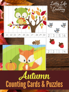 Perfect for preschoolers, get counting with these autumn counting cards and puzzles