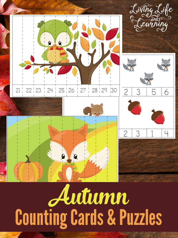 Fall is the perfect time to up your homeschooling learning with these Fall Animals Counting Cards and Puzzles! Great for preschoolers!