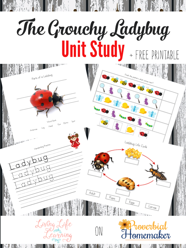 Learn even more about ladybugs with this Grouchy Ladybug Unit Study Printable