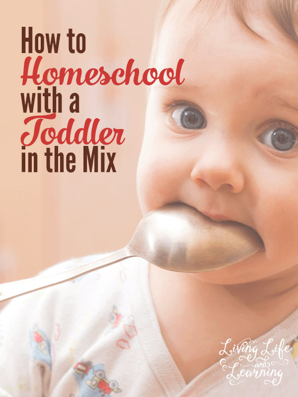 Do you have a toddler wreaking havoc in your homeschool? How can you find time to homeschool the other kids while keeping your toddler happy?