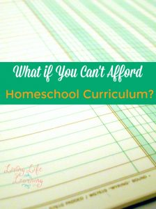If you're out of money and can't afford homeschool curriculum? What can you do? These ideas for free and inexpensive curriculum will get you back on track!