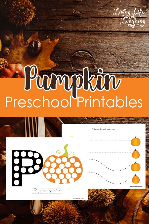 Get into the fantastic Fall spirit with these Pumpkin Preschool Printables! My daughter especially loves the dot coloring pages.