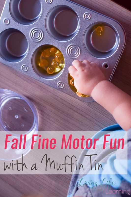 Perfect sensory play for toddlers, but my kindergartener had fun with it, too: Fall Fine Motor Fun with a Muffin Tin, plastic acorns, and plastic leaves.