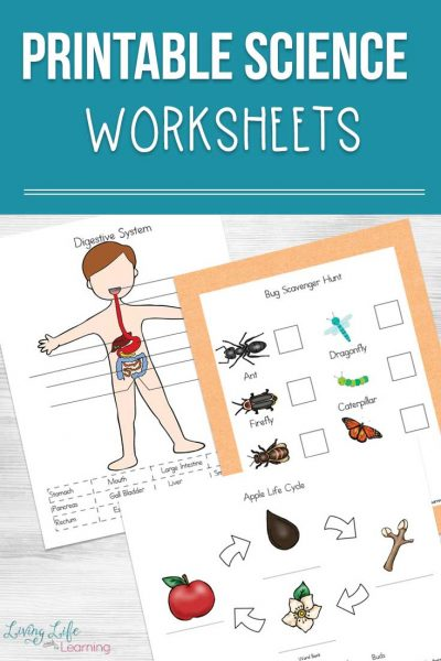 See this mega list of awesome printable Science worksheets and activities that your kids will love. It will also help them learn the material better.