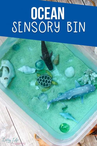 Fun Ocean Sensory Bin for Kids
