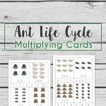 Make learning math fun and start multiplying with these cool ant life cycle multiplication cards for 2 and 3 times tables.