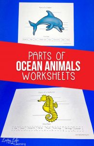 Parts of Ocean Animals Worksheets