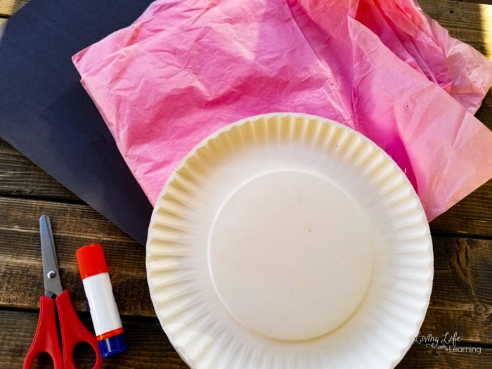 Paper plate Piggie craft supplies