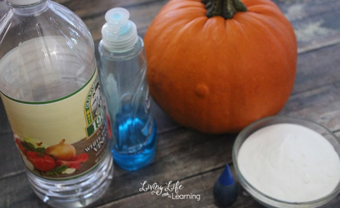 Bubbling pumpkin experiment supplies