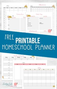 photograph relating to Printable Homeschool Planner named Totally free Printable Homeschool Planner