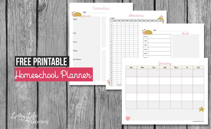 graphic about Free Printable Homeschool Planner named Totally free Printable Homeschool Planner