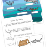 Shark Worksheets for Kids